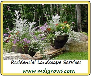 Burdick & Associates, Residential Landscape Design Services Mount Desert Island Maine