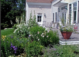 MDI Grows, Garden  & Landscape Services, Plantings, Landscape Irrigation Systems, Annual Gardens, Mount Desert Island Maine