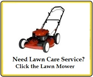 Best Lawn Care Service Providers